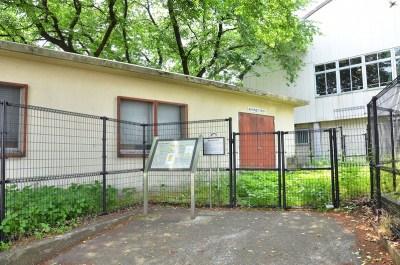 第一中学校校舎北側の東大和市地盤沈下観測所(東京都の施設)