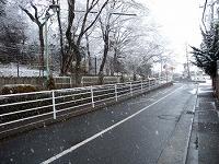 雪の多摩湖周囲道路