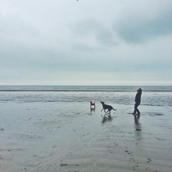 photo à la plage prise par un iphone x