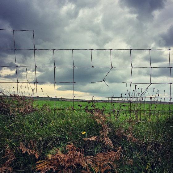 belle photo paysage avec un iphone x
