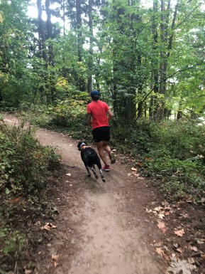 trail-running-with-doggo