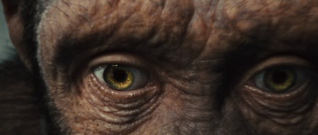 rise_of_the_planet_of_the_apes_01