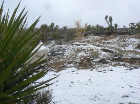 2-20-13-snow