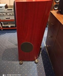 Audio Physic Virgo V