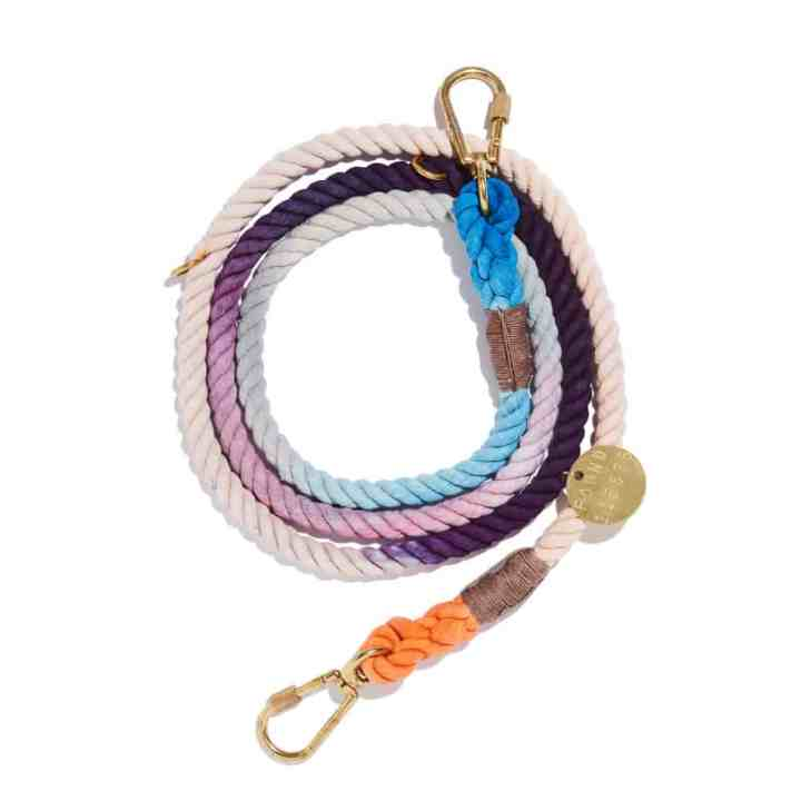 image of found my animal leash gifts for the soul winter 2020