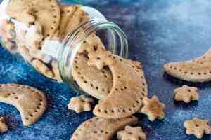 image of peanut butter banana dog treats shaped into moons and stars