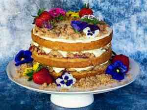 image of strawberry lemonade sourdough cake