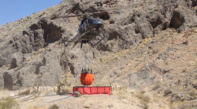 Water Drops Saving Nevada's Desert Bighorns