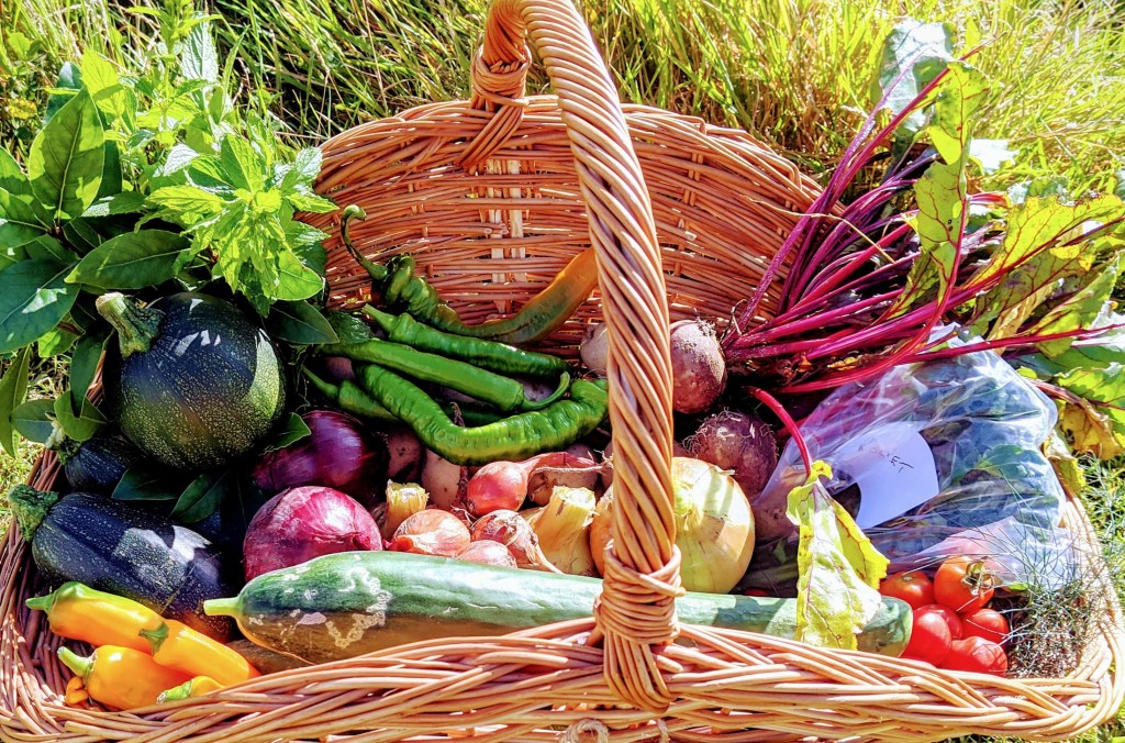 Homegrown produce from the farm.