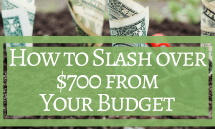 How to Slash over $700 from your Budget