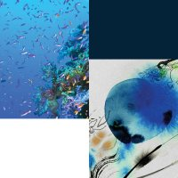 Hlboký ponor do Tiffaninej modrej knihy 2015 - Umenie mora