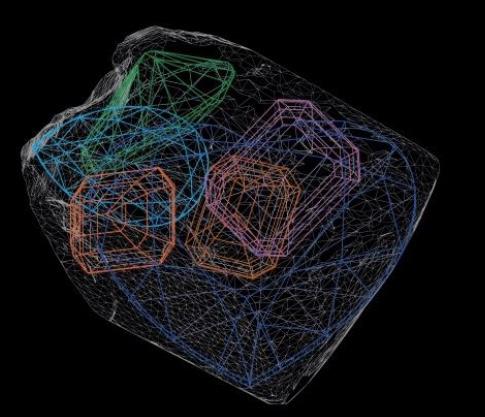 graff-venus-analysis