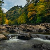 Backcountry Angling: Fishing WV's Remote Drainages