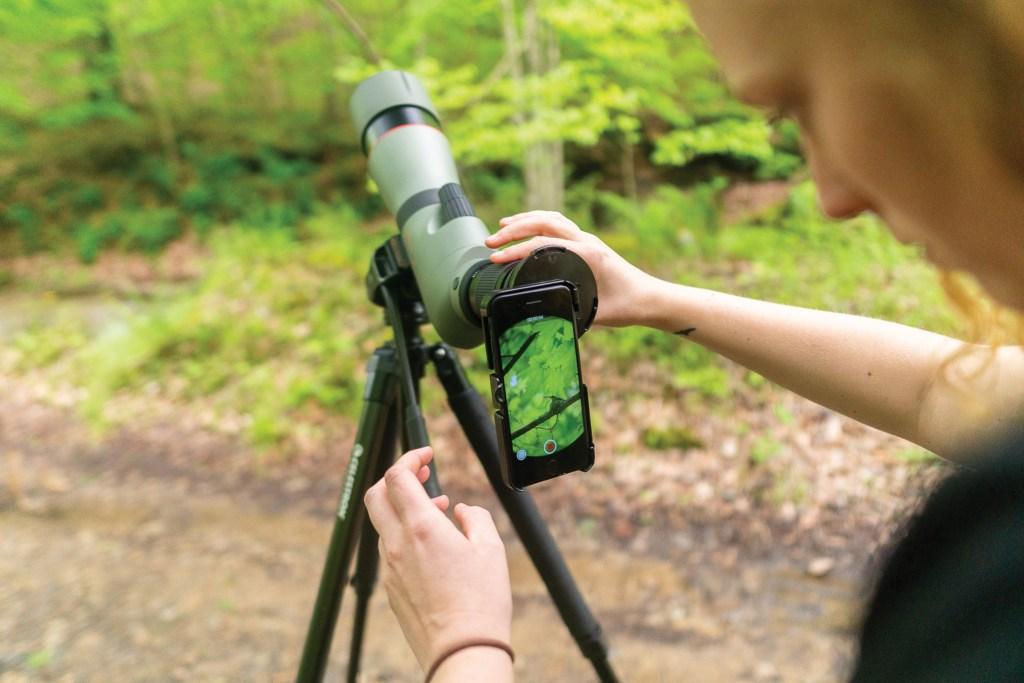 Birding: Photography