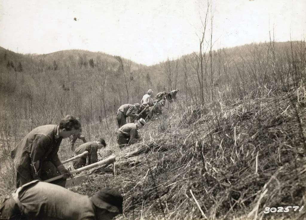 Monongahela National Forest: CCC Boys Planting Trees