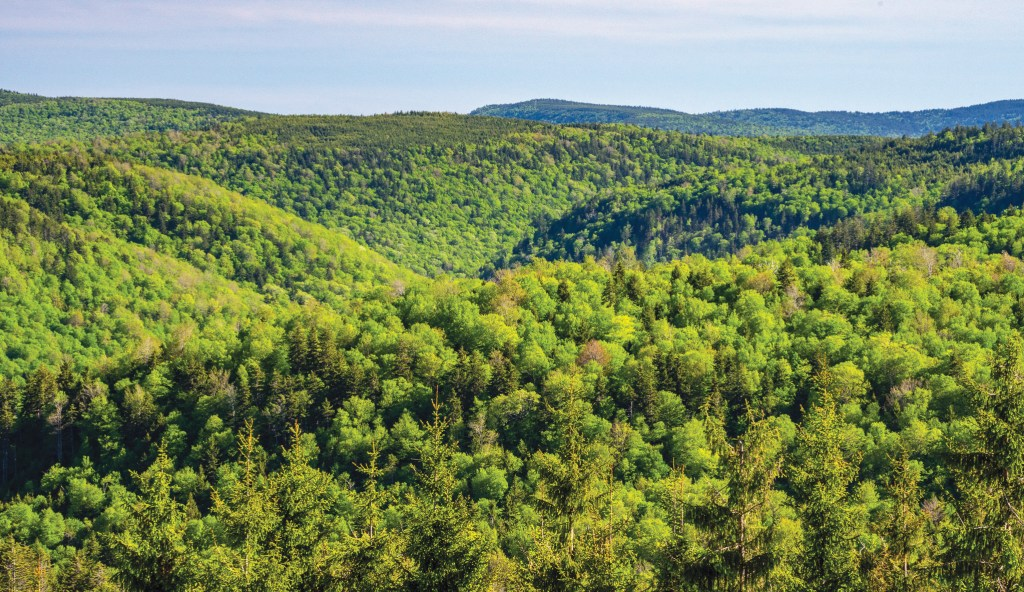 •Western style views of the West Virginia highlands