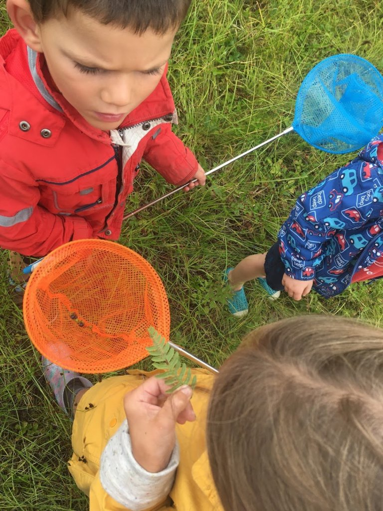 Outdoor Education: Children observing nature