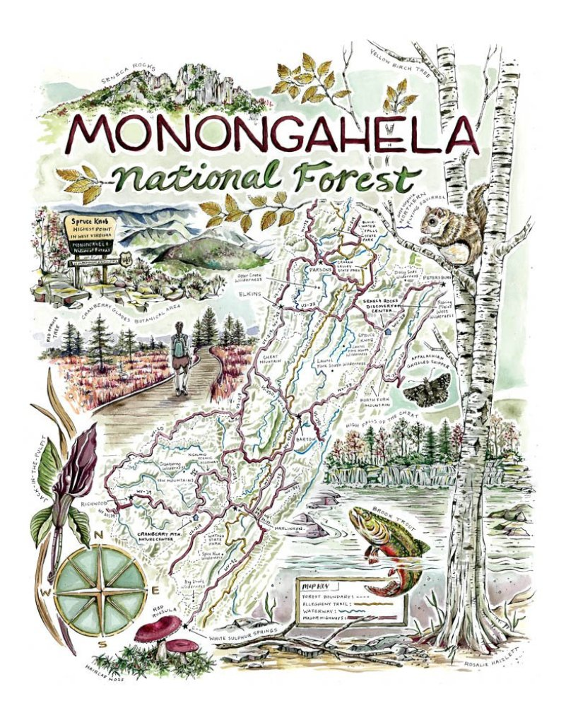 WV Art - Monongahela National Forest Map