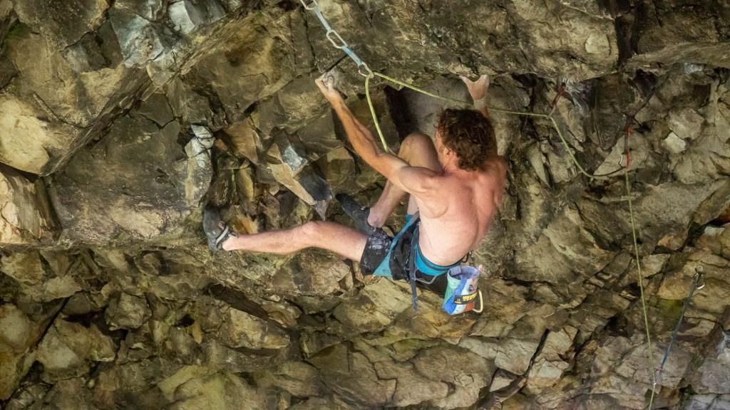 Flyin' Lion - Matt Fanning Ascending