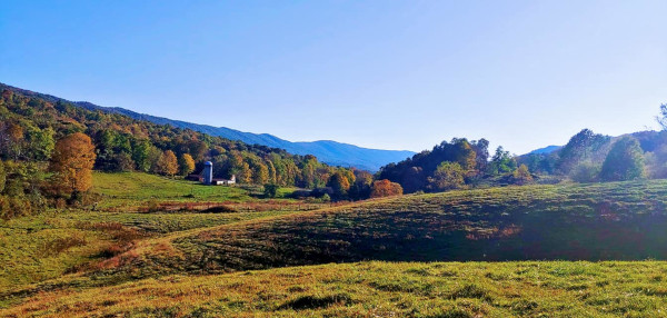 Monterey, McDowell, Allegheny Mountain, Blue Grass, Doe Hill, Hightown, Meadowdale, Mill Gap,Highland County, Virginia, travel, tourism, leaves, leaf, fall, color, autumn, photography, mountains, forest, landscape, photographs, photograph, pictures