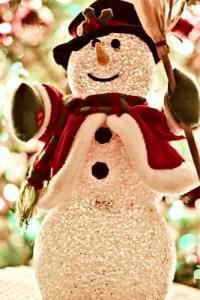Highland County, Virginia, Wintertide, Celebration, Christmas, holidays, market, vendors, vendor, shopping, hand made, local, crafts, lights, festival
