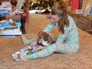 Highland County, Virginia, Christmas, holidays, holiday, dog, Alex, dachshund, blog, author, point of view, best dog blogs, blog with a dog, the dog blog, puppy blog, christmas dog, Christmas puppy, christmas dachshund, merry christmas dog, the dogs of christmas, xmas dog, merry christmas puppy, a christmas puppy,