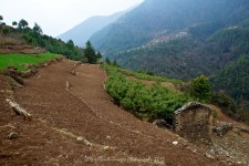 Stepped, cultivated fields between Lukla and Phakding