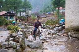A horseman heads up the trail between Monjo and Phakding.