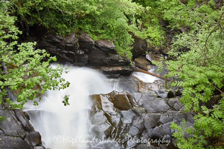 The Birks of Aberfeldy