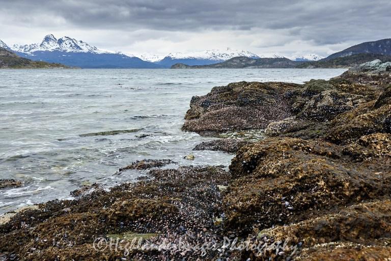 Ensenada Zaratiegui, Tierra del Fuego National Park, Ushuaia, Argentina