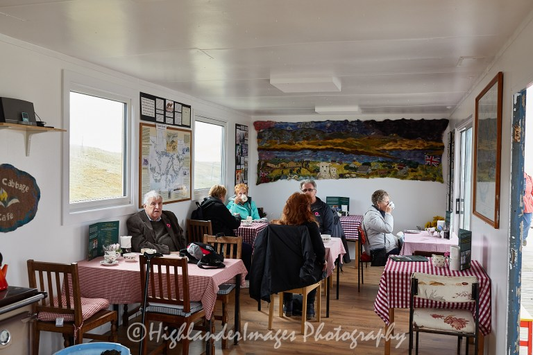 Sea Cabbage Cafe, Bluff Cove Penguin Rookery, Falkland Islands