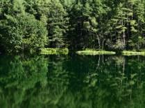 盛夏の御射鹿池