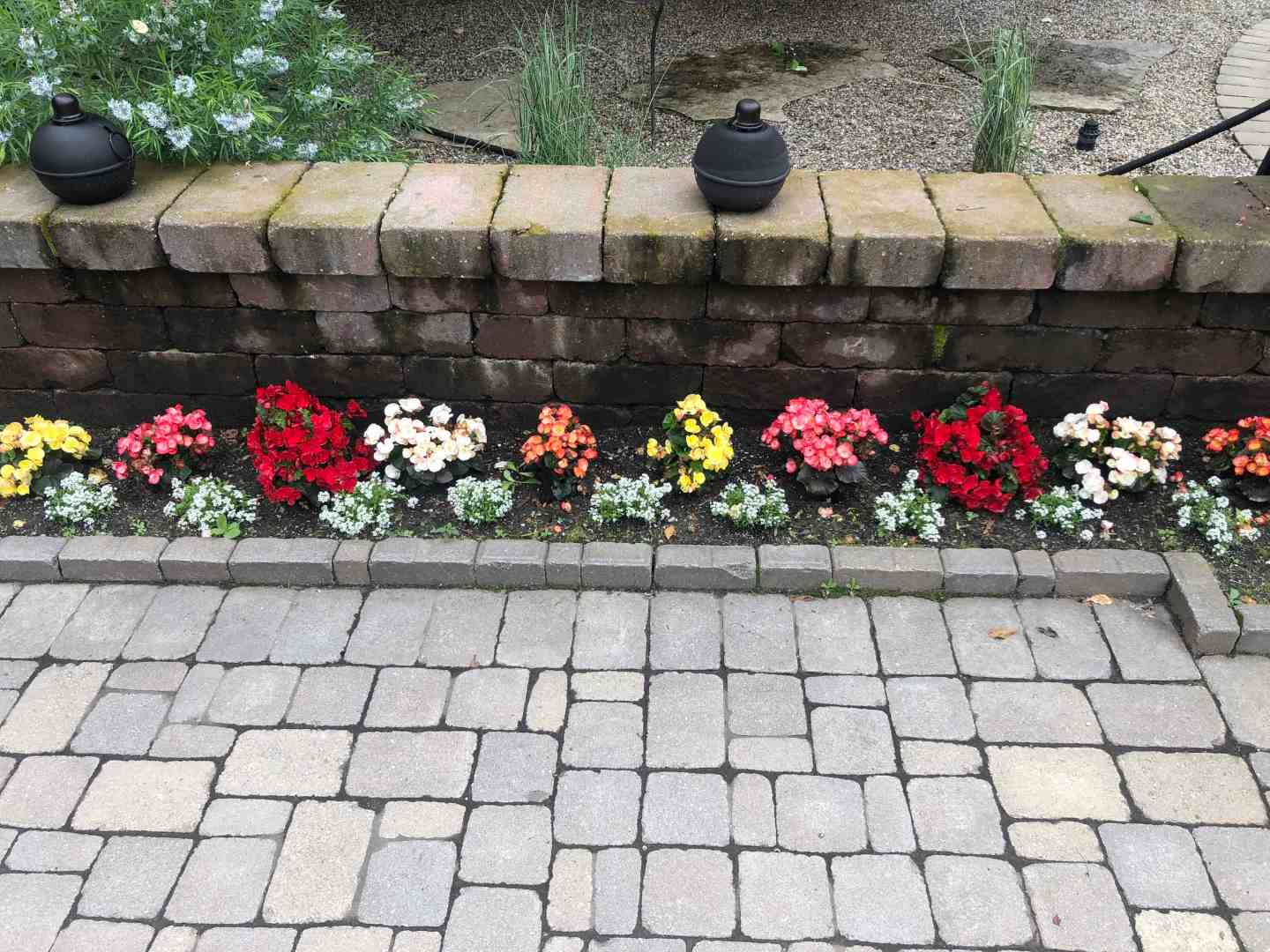 Bright flowers line a brick garden fence