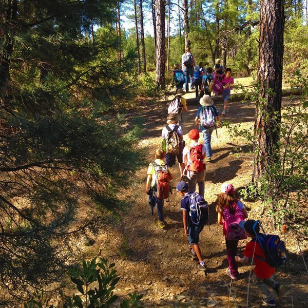 Outdoor education with school field trips