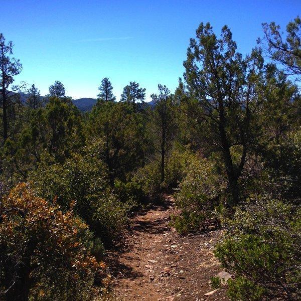 prescott national forest hiking trails