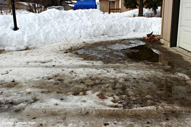 Alaska snowpack melting in the driveway.