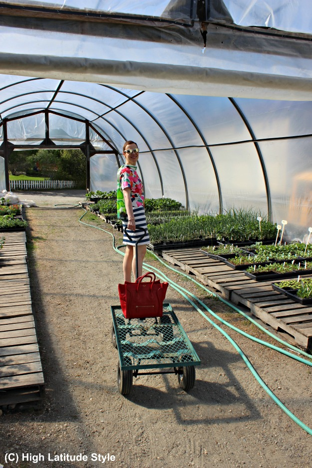 mature woman in a greenhouse with chart