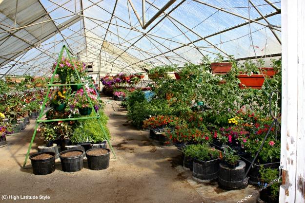 ready to go flower arrangements