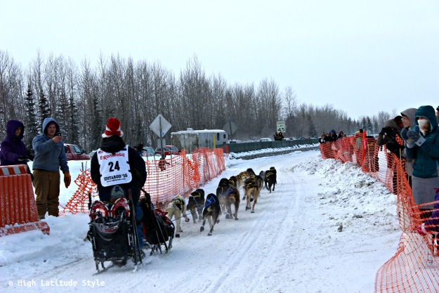 #shleddogs Sled dog team at Iditarod