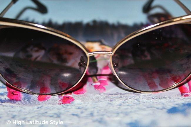 #coolglasses view thru black lenses on dog musher mushing her team