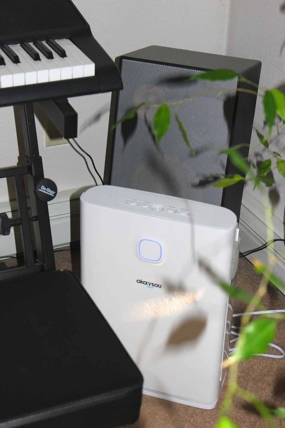 You are currently viewing What You Need to Know About Indoor Air Quality