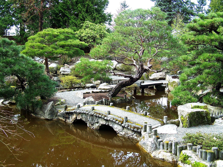 Japanese Garden seike japanese garden | highline seatac botanical garden