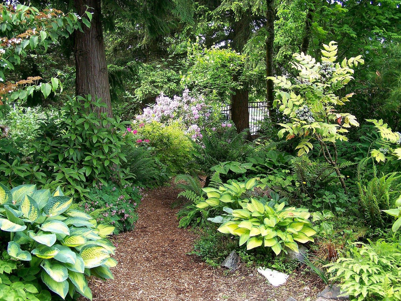 Elda Behm 39 S Paradise Garden Highline Seatac Botanical Garden
