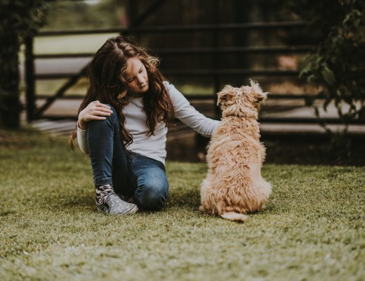 a highly sensitive child pets a dog