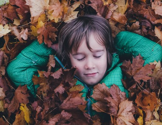 a highly sensitive extroverted kid enjoys alone time