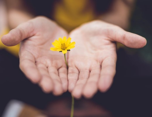 a highly sensitive person learns how to train hope