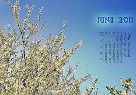 June Youth Calendar