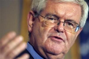 Former Speaker of the House Newt Gingrich speaks at the Richard Nixon Library in Yorba Linda, California in this May 24, 2007 file photo. REUTERS/Mark Avery