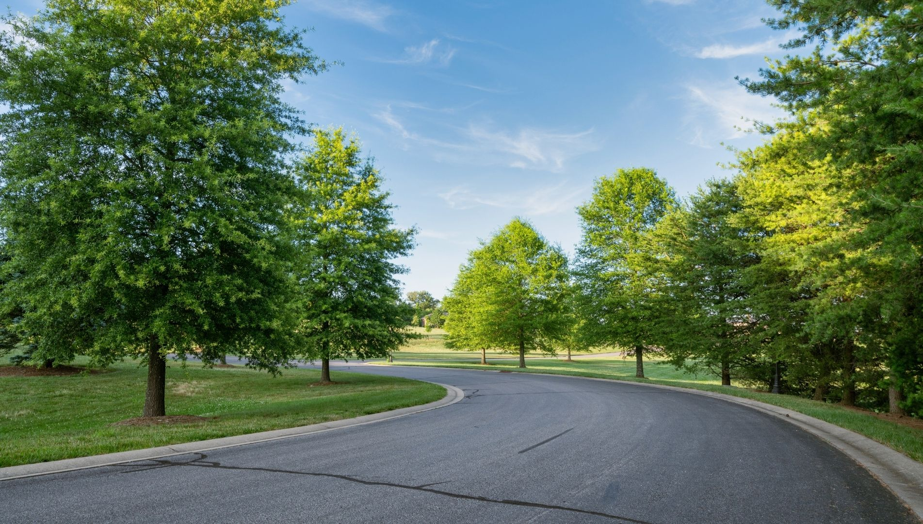 High Pointe Luxury Development Greenery