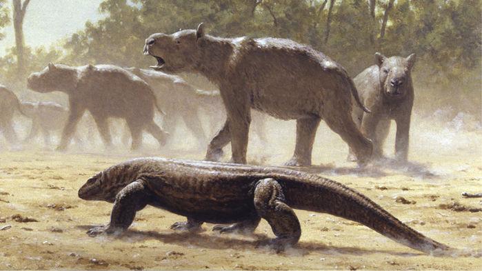 Gigantes reptiles y no mamíferos fueron los que reinaron Australia hasta hace relativamente poco